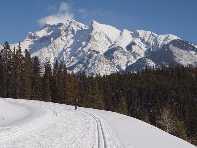 Adam Kahtava - XC Skiing Cascade Valley Banff 027