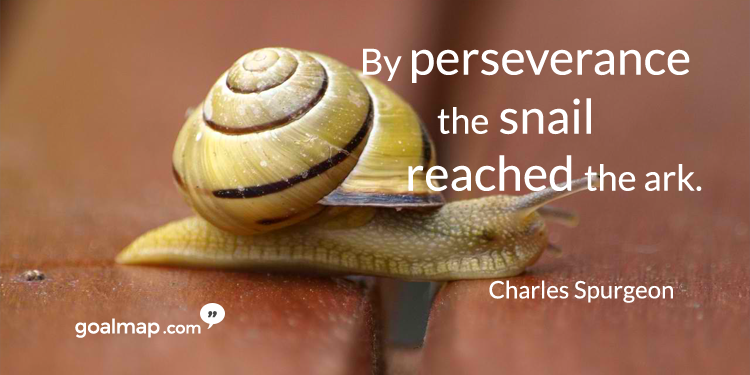 By perseverance the snail reached the ark - Motivational quote